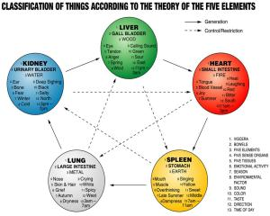 Theory-of-the-Five-elements1